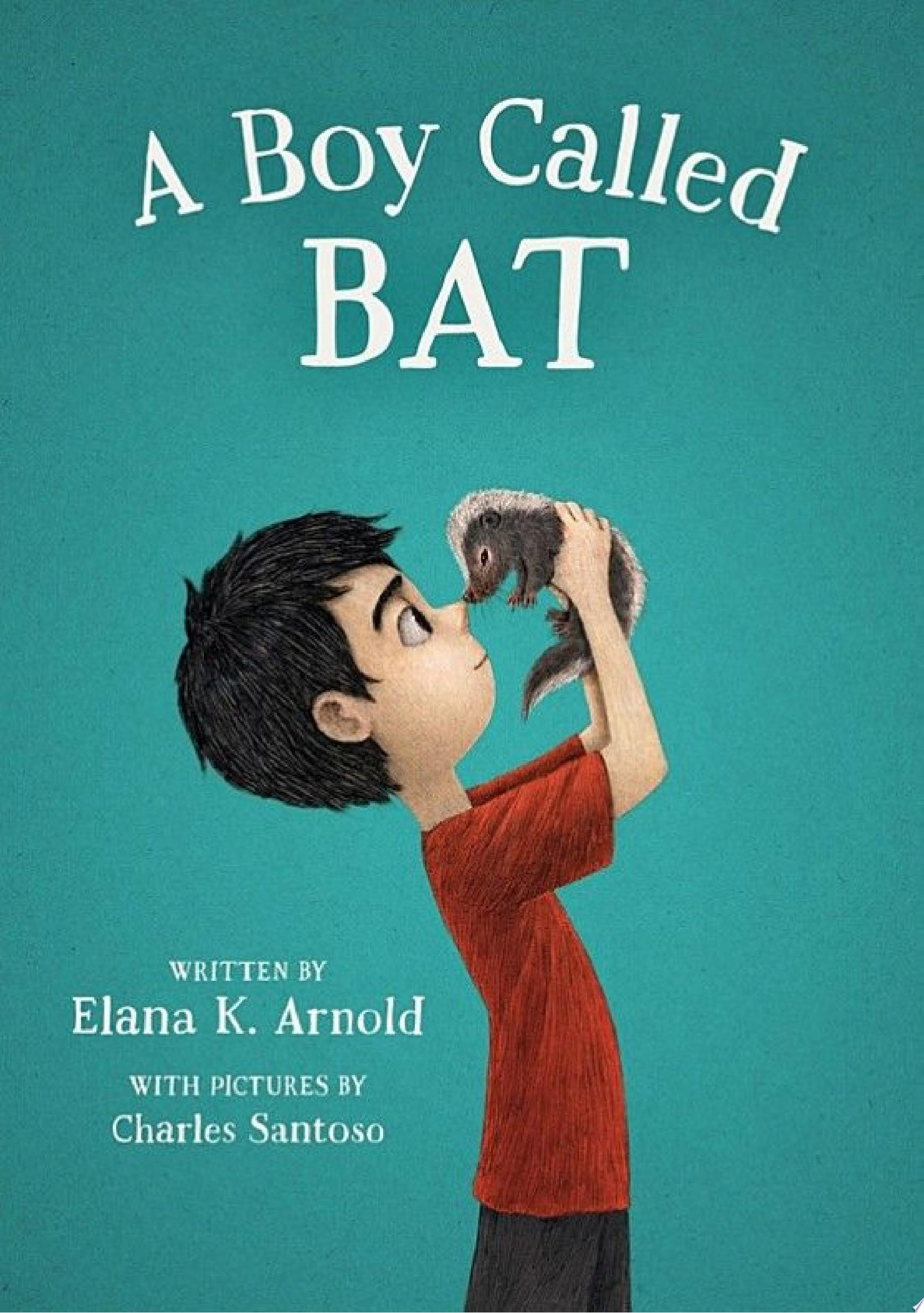 "Image for ""A Boy Called Bat"""
