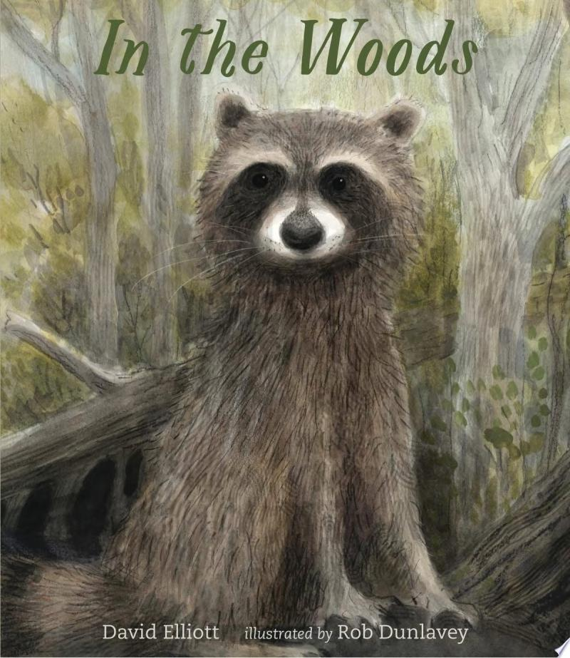 "Image for ""In the Woods"""
