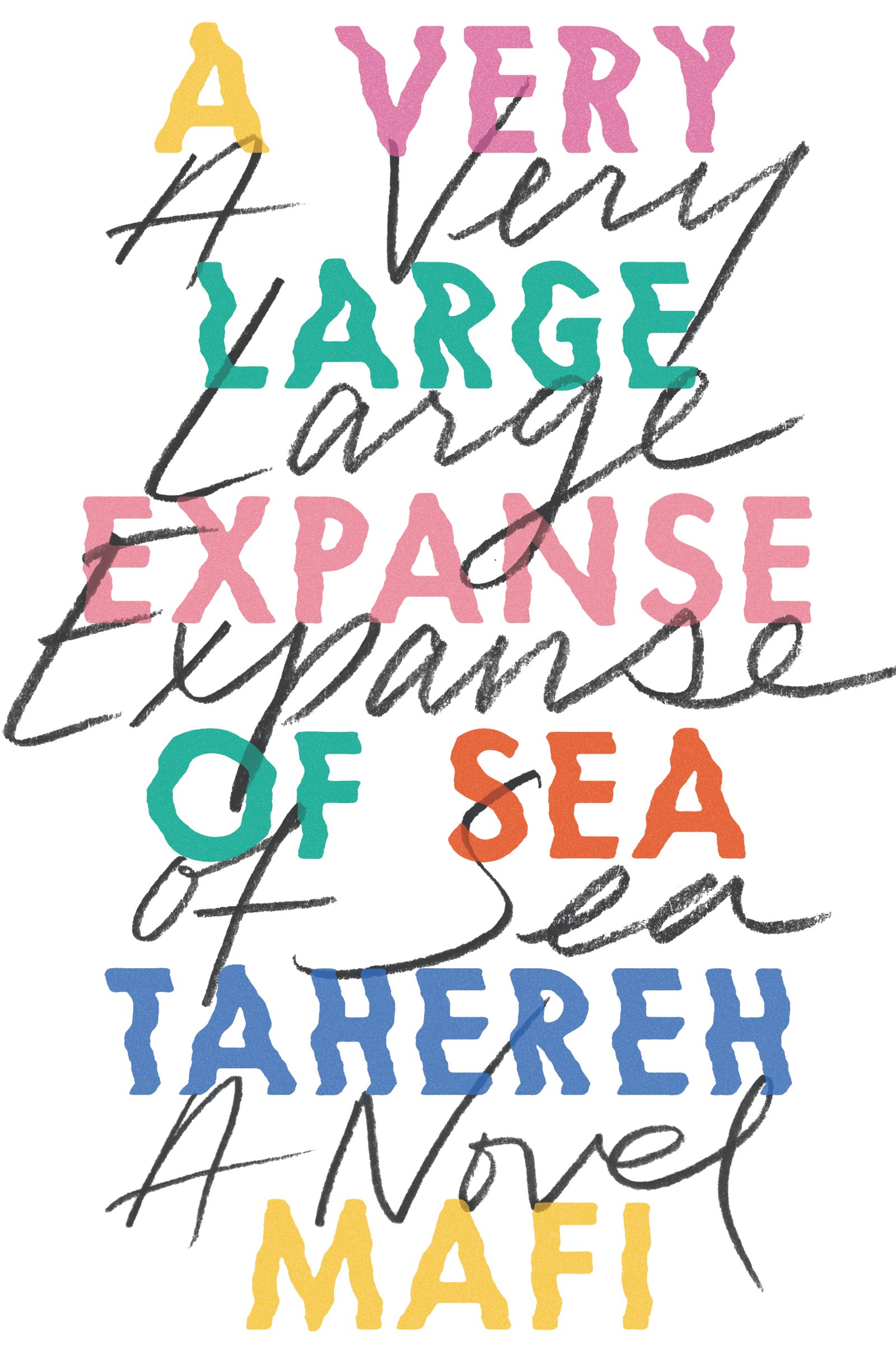 "Cover Image for ""A Very Large Expanse of Sea"""