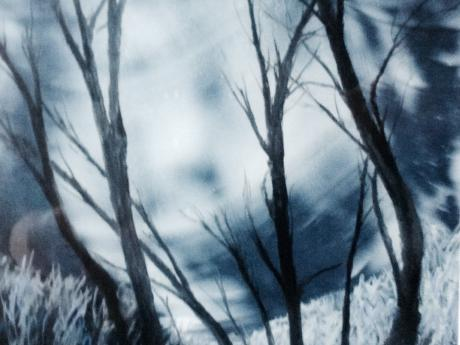 A painting of a winter forest in the moonlight