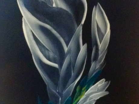 A painting of white lilies on a black background