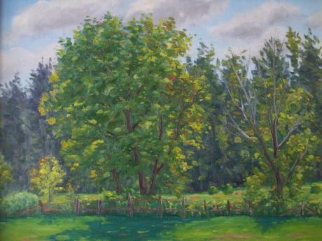 A painting of trees as their leaves are changing color in early autumn. A wooden fence is in front of the trees.
