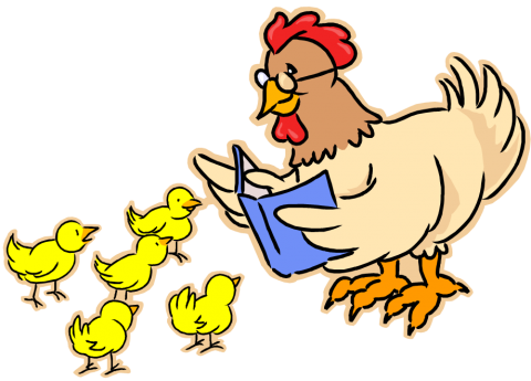mother hen reading to her chicks graphic