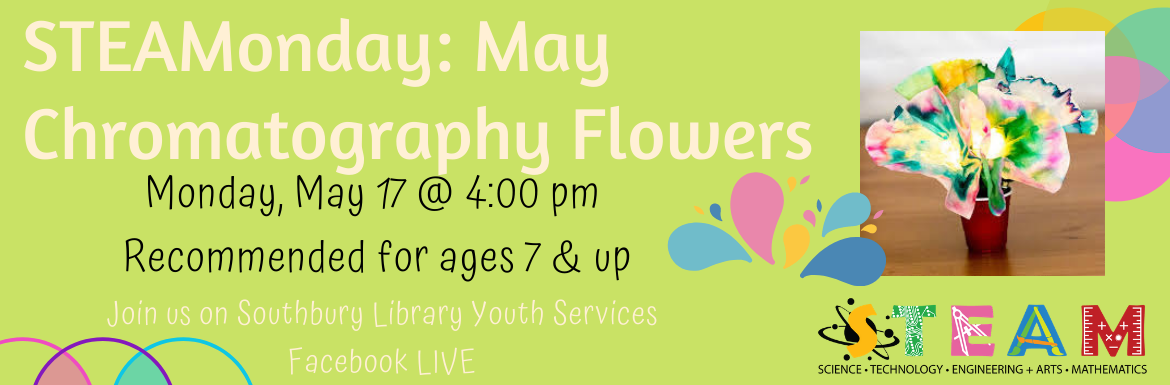 STEAMonday: May Chromatography Flowers. Monday, May 17 @ 4:00 pm. Recommended for ages 7 & up. Join us on Southbury Library Youth Services Facebook LIVE.